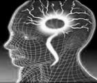 Inn_brainetworks