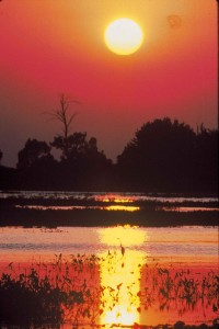 Sunset_red_burd_scenics_landscape